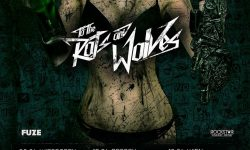 Vorbericht: To the Rats and Wolves – Spring Bangers European Tour 2017
