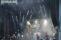 M'era Luna 2017 – Sa., 12.08. – Korn, KMFDM, Project Pitchfork, Subway To Sally