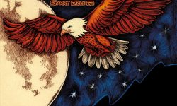 SVARTANATT (SWE) – Starry Eagle Eye