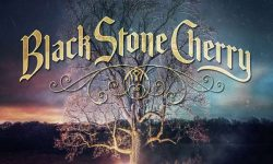 Black Stone Cherry (USA) – Family Tree