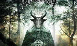 Witchskull (AUS) – Coven's Will