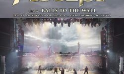 "News: ACCEPT- 10 inch vinyl ""Balls To The Wall / Symphony No.40 in G Minor"", veröffentlicht!"