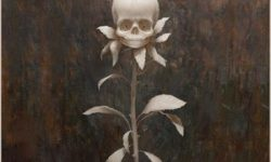 Black Paisley (S) – Perennials