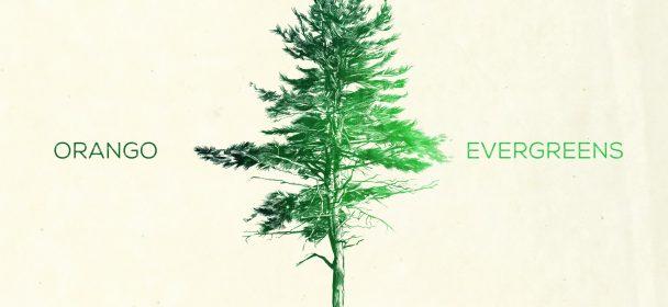 ORANGO (NOR) – Evergreens