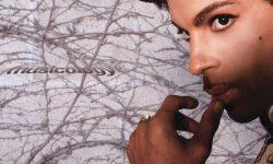 Prince (USA) – Musicology