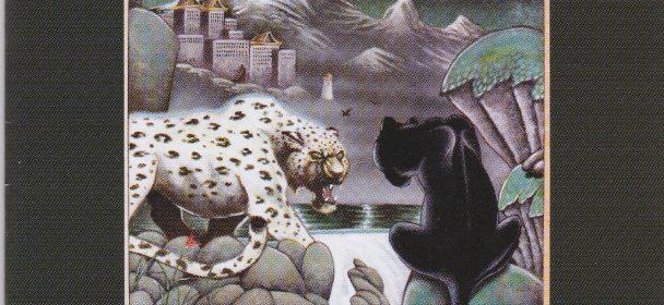 Winterkat (USA) – The Struggle