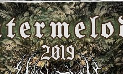 News: Wintermelodei 2019  – Laster dabei & EARLY BIRD TICKETS AUSVERKAUFT