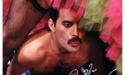 Freddie Mercury (GB) – Never Boring