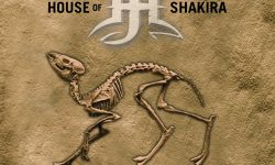 House Of Shakira (S) – Radiocarbon