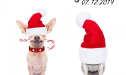 Erlensee Rockt! Christmas Special mit OHRENFEINDT & CUMA