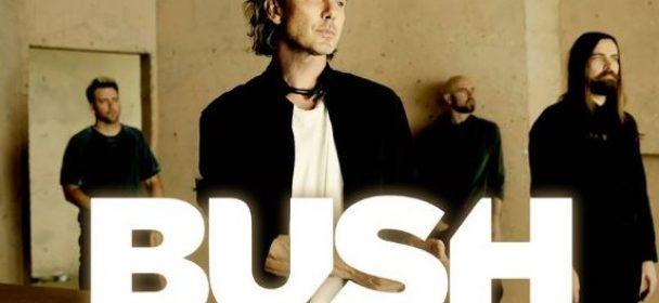 News: Bush – Live 2020  in Hamburg, Berlin und Münster!