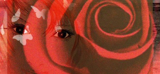"""News: Von Willie Nelson erscheint am 24. 04. das neue Album """"First Rose Of Spring"""" auf CD, LP"""