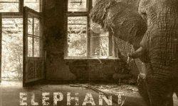 Blackballed (GB) – Elephant In The Room
