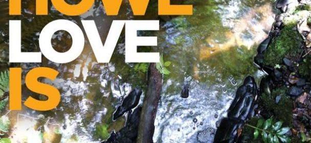 Steve Howe (GB) – Love Is