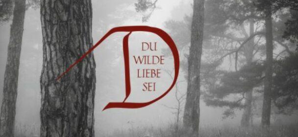 News: DORNENREICH reveal second single 'Der Freiheit Verlangen nach goldenen Ketten'