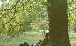 John Lennon (GB) – John Lennon/Plastic Ono Band: The Ultimate Collection