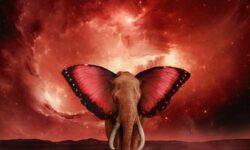 Tom Morello (USA) – The Atlas Underground Fire